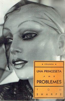 Portada del llibre 'Una princeseta amb problemes'